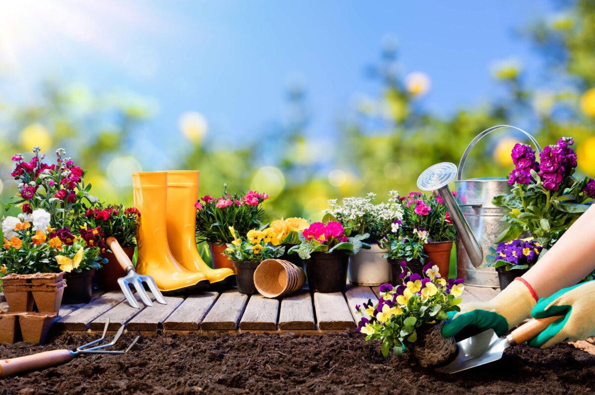 come-sistemare-giardino-attrezzi2