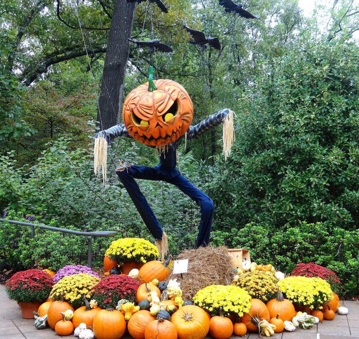 giardino-halloween9