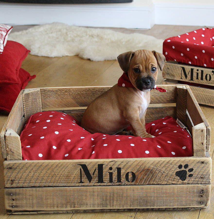 Come creare un cuscino fai da te per cani 7