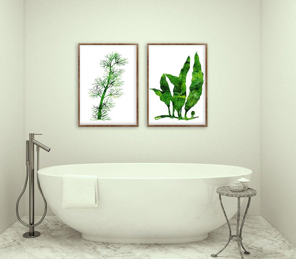 abbellire-casa-piante-botaniche-bagno