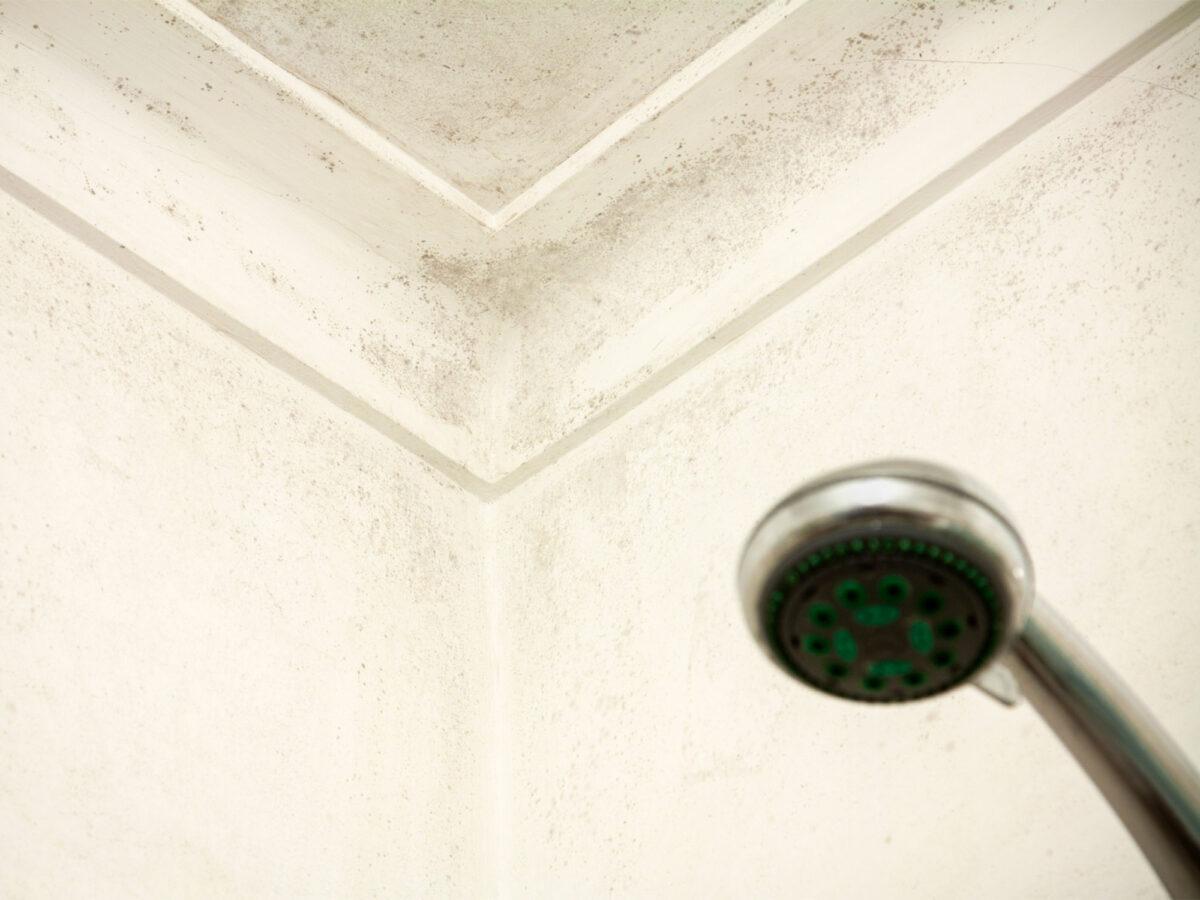 come-togliere-umidità-bagno