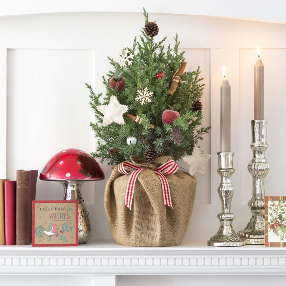 decorazioni-low-cost-per-natale-10