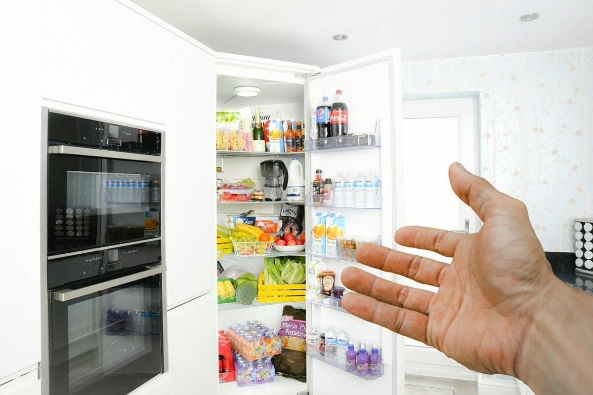 muffa-frigorifero