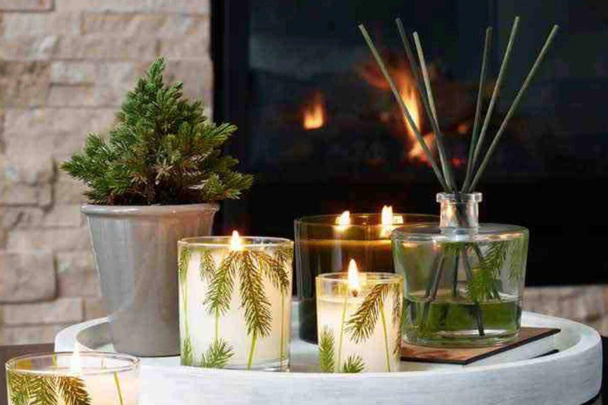 piante-adatte-cena-capodanno-1