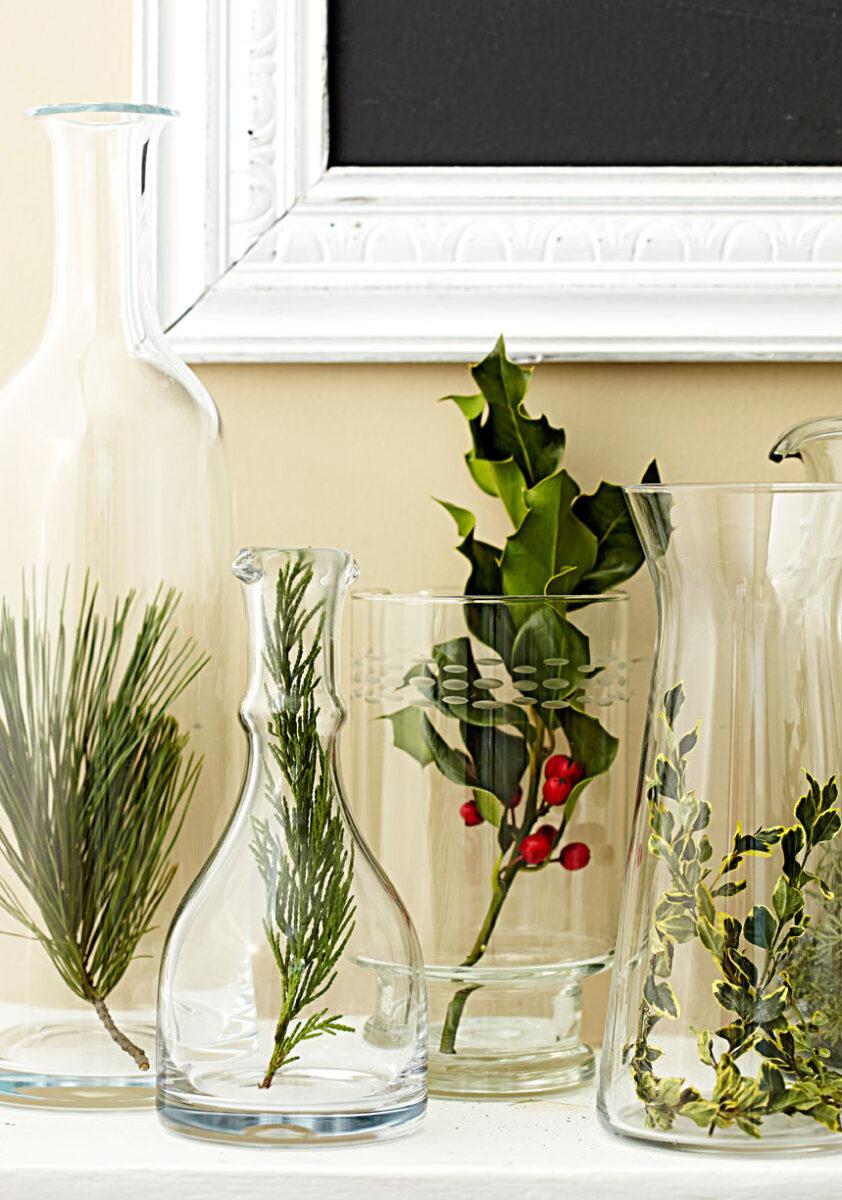piante-adatte-cena-capodanno-6