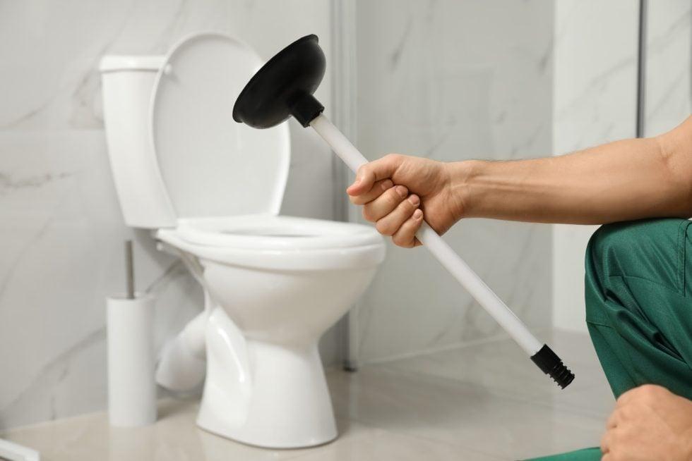 come-pulire-scarico-wc-5