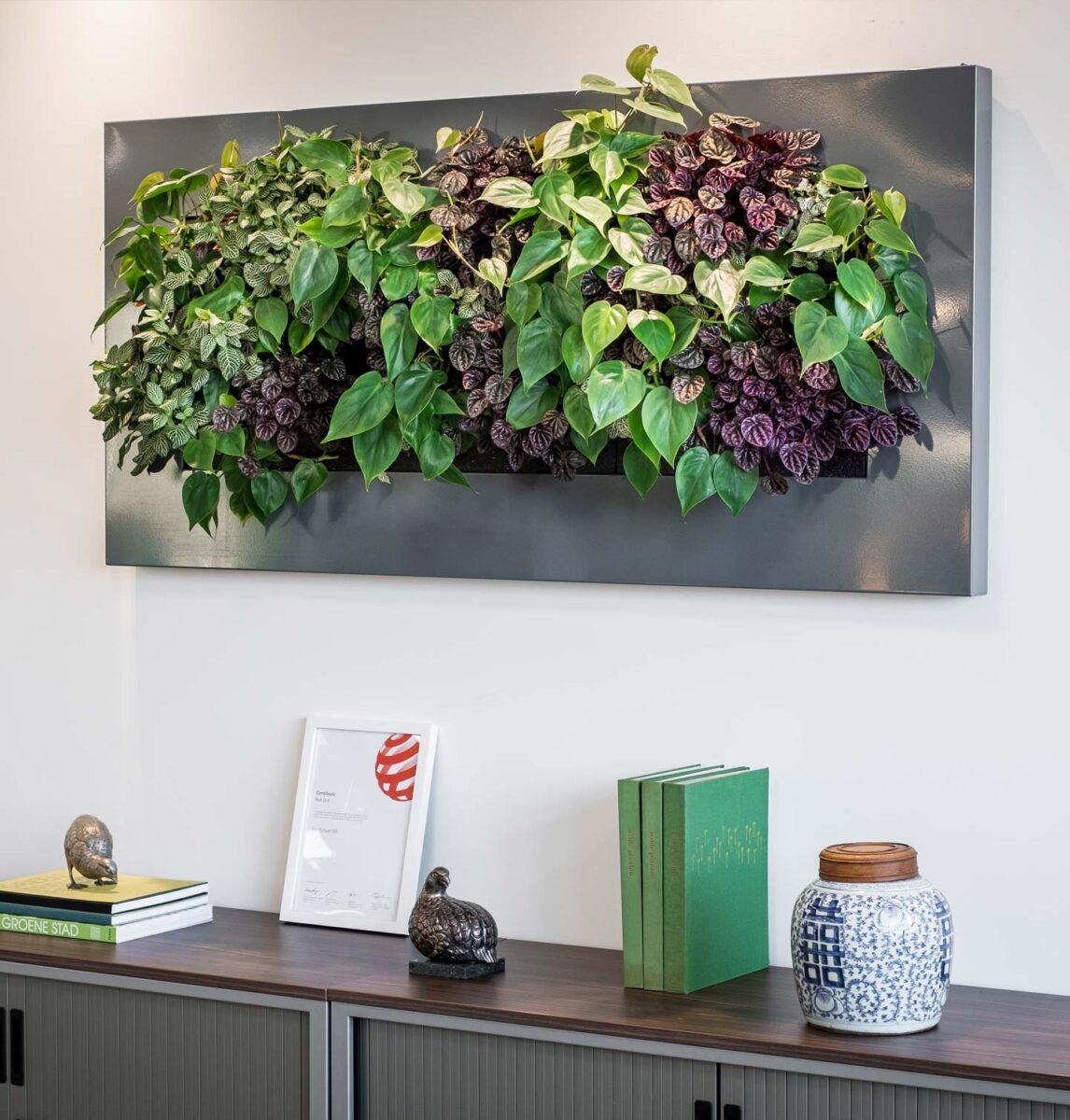 quadri-vegetali2